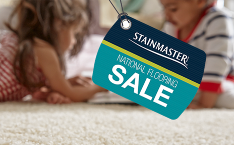 Stainmaster Carpet Sale